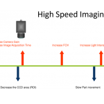 svl high speed imaging
